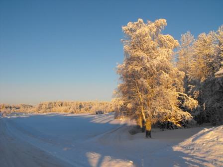 Foto: Josefine Lundgren